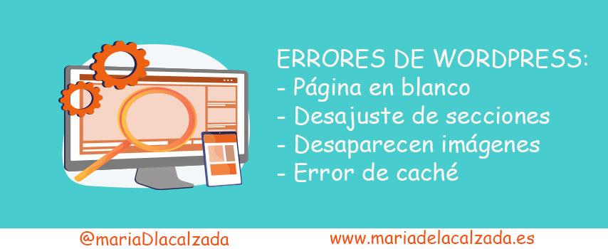 artículo blog errores de wordPress